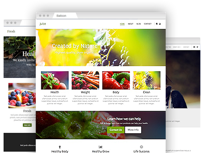 A selection of creative website templates